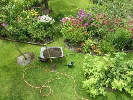 Garten, ein grüner Garten aus der Vogelperspektive, Foto: schulzie / iStock