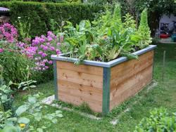 Hochbeet, ein Garten mit einem hölzernen Hochbeet, Foto: vulkanismus / fotolia.de