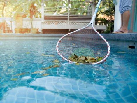 Swimmingpool, jemand fischt Blätter mit Käscher aus Poolbecken, Foto: bignai / stock.adobe.com