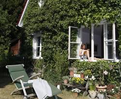 Fassadenbegrünung, Haus, Efeu, Foto: BHW