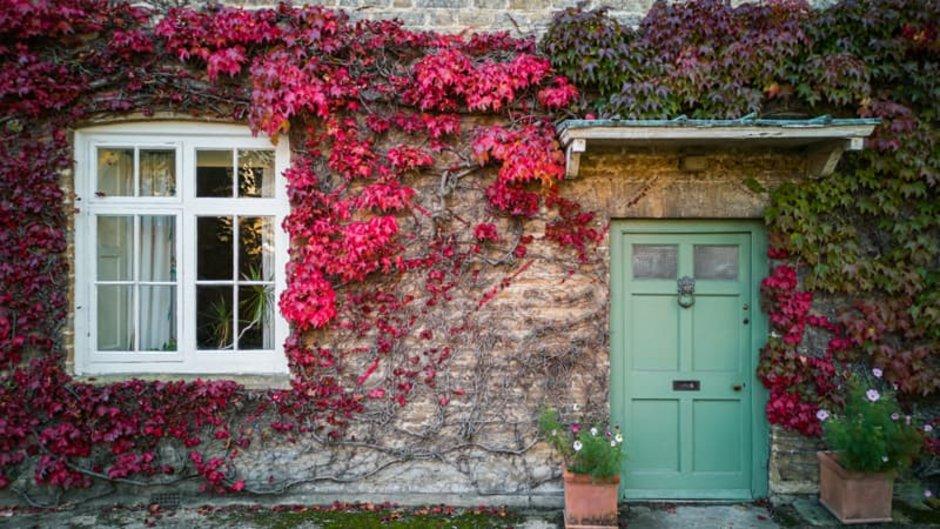 Fassadenvarianten, Steinhaus mit begrünter Fassade, der wilde Wein hat rote Blätter, Foto: mubus / stock.adobe.com