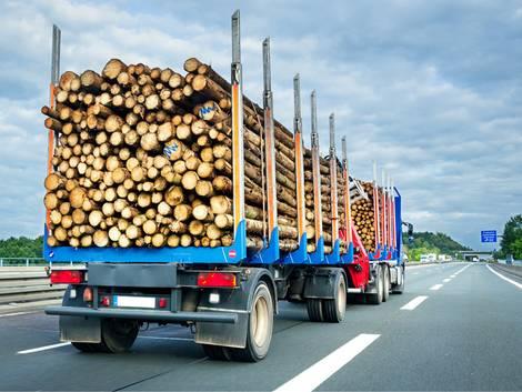 energieeffizient Bauen, ein LKW transportiert Baumstämme über die Autobahn, Foto: Petair / stock.adobe.com