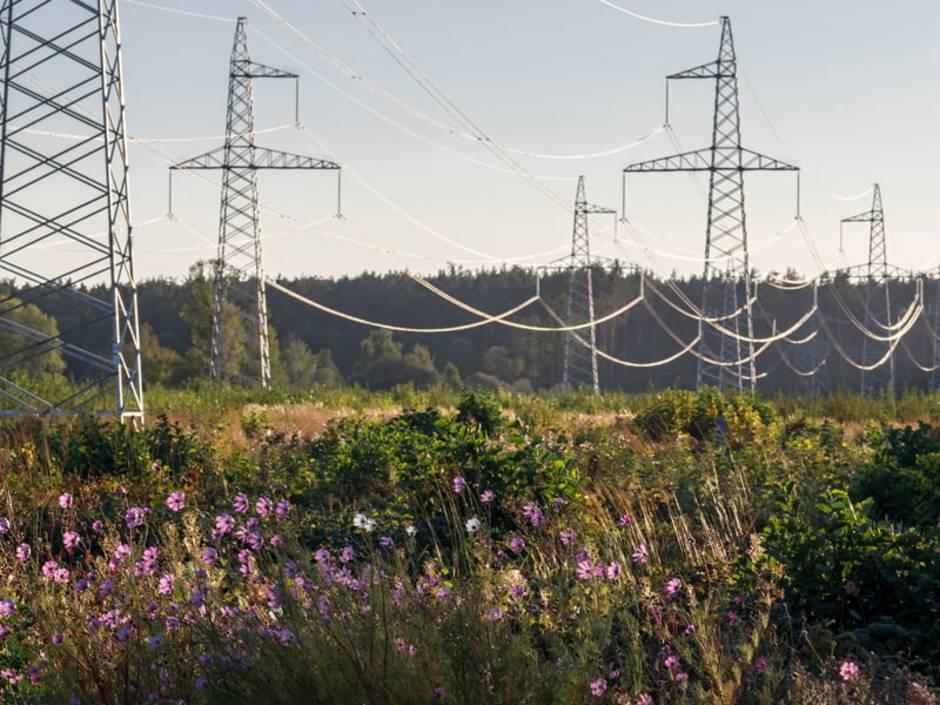 Gleichstrom, Wechselstrom, Hochspannungsleitungen, Foto: vladk213 / stock.adobe.com