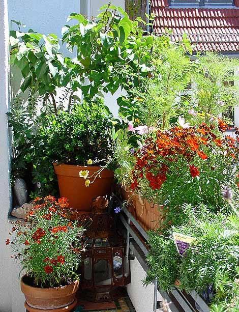 kleiner Balkon, Pflanzen, Foto: balkonsaison.de