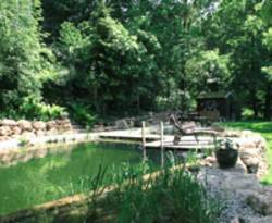 Schwimmteich Die Alternative Zum Pool Bauende