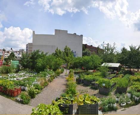 Prinzessinnengarten, Berlin, Urban Farming. Foto: prinzessinnengarten.net