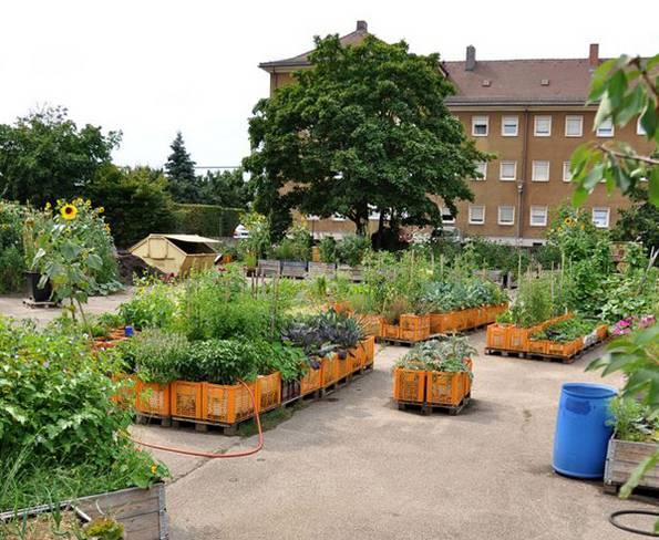 Urban Farming, Urban Gardening, stadtgarten, Nürnberg. Foto: stadtgarten-nuernberg.de