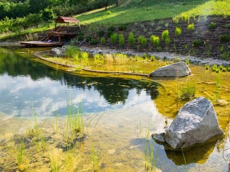 Schwimmteich, ein Schwimmteich mit Regenerationsbecken
