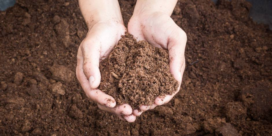 Hochbeet selber bauen, diy, Pflanzhumus, Foto: tortoon - Fotolia.com