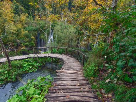 Gartenweg anlegen, ein Knüppeldamm schlängelt sich durch hübsche Natur an Wasser vorbei, Foto: hk13114 / stock.adobe.com