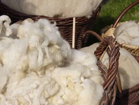 energieeffizient Bauen, Schafwolle in einem Weidenkorb, Foto: iStock / ideeone