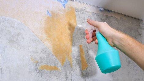 Tapeten ablösen, Jemand sprüht mit einer Sprühflasche Wasser auf die Wand, Foto: iStock.com / Detry26