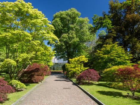 Gartenweg anlegen, Breiter Weg mit Kies, Foto: Sébastien Closs / stock.adobe.com