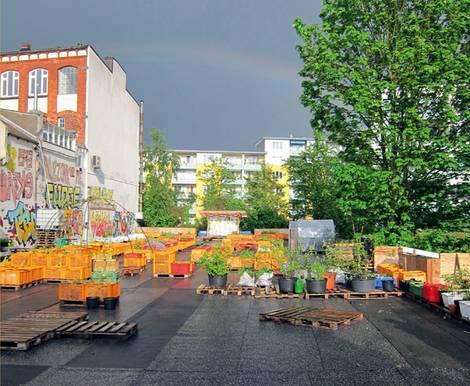 Urban Gardening, Hamburg, Gartendeck. Foto: Gartendeck 2012