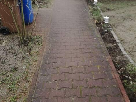 Gartenweg anlegen, Betonpflaster, Verfärbungen, Foto: Steffen Malyszczyk