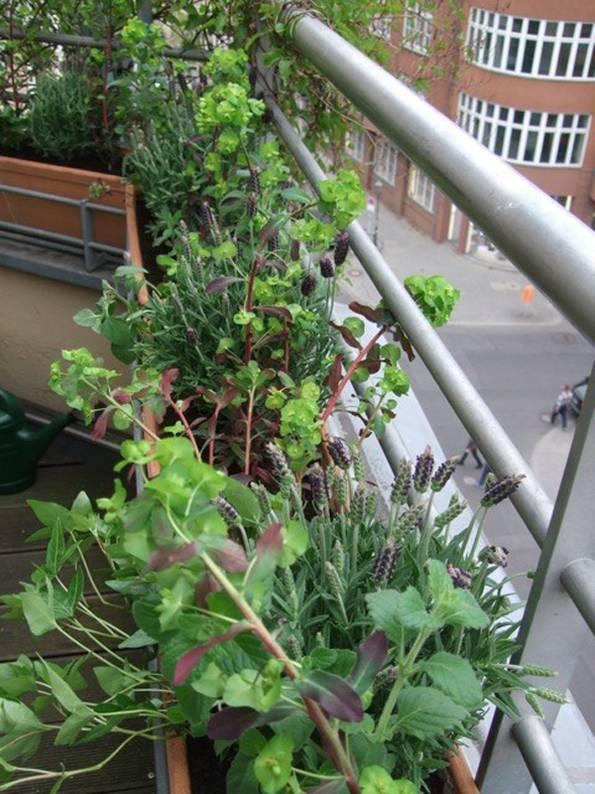 kleiner Balkon, Grünpflanzen, Foto: balkonsaison.de