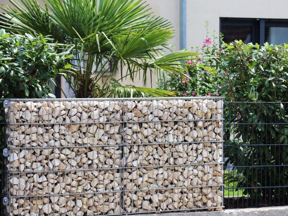 Sichtschutz, Gabione und Zaun mit Pflanzen, Foto: U. J. Alexander / stock.adobe.com