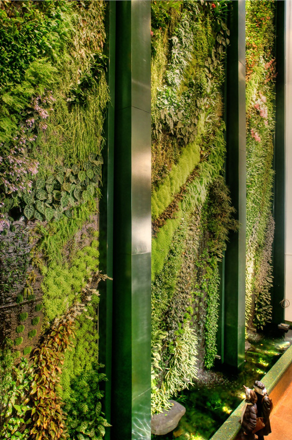 gr ne wand raffinierter blickfang f r die wohnung. Black Bedroom Furniture Sets. Home Design Ideas