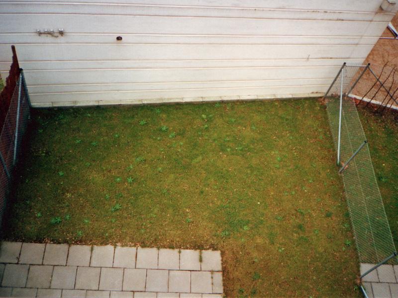 Vorher: Eine Langweilige Grünfläche. Foto: Terramanus