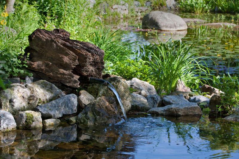 Von der umwelt inspiriert naturgarten anlegen - Gartenteich gestaltungsideen ...
