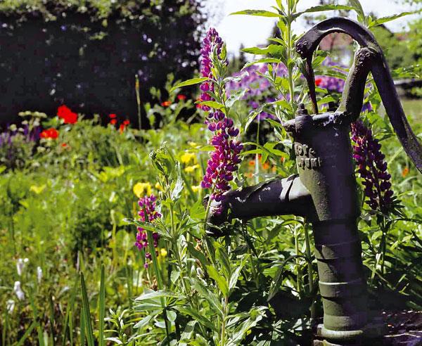 gartengestaltung: tipps für kleines budget - bauen.de, Gartenarbeit ideen