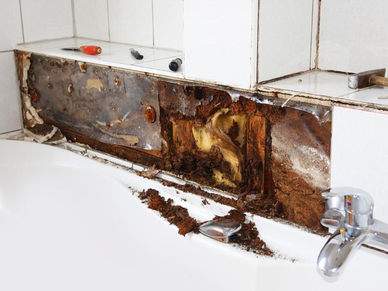 Bad Fußboden Sanieren ~ Dichtschlämme schutz vor feuchten wänden im badezimmer bauen